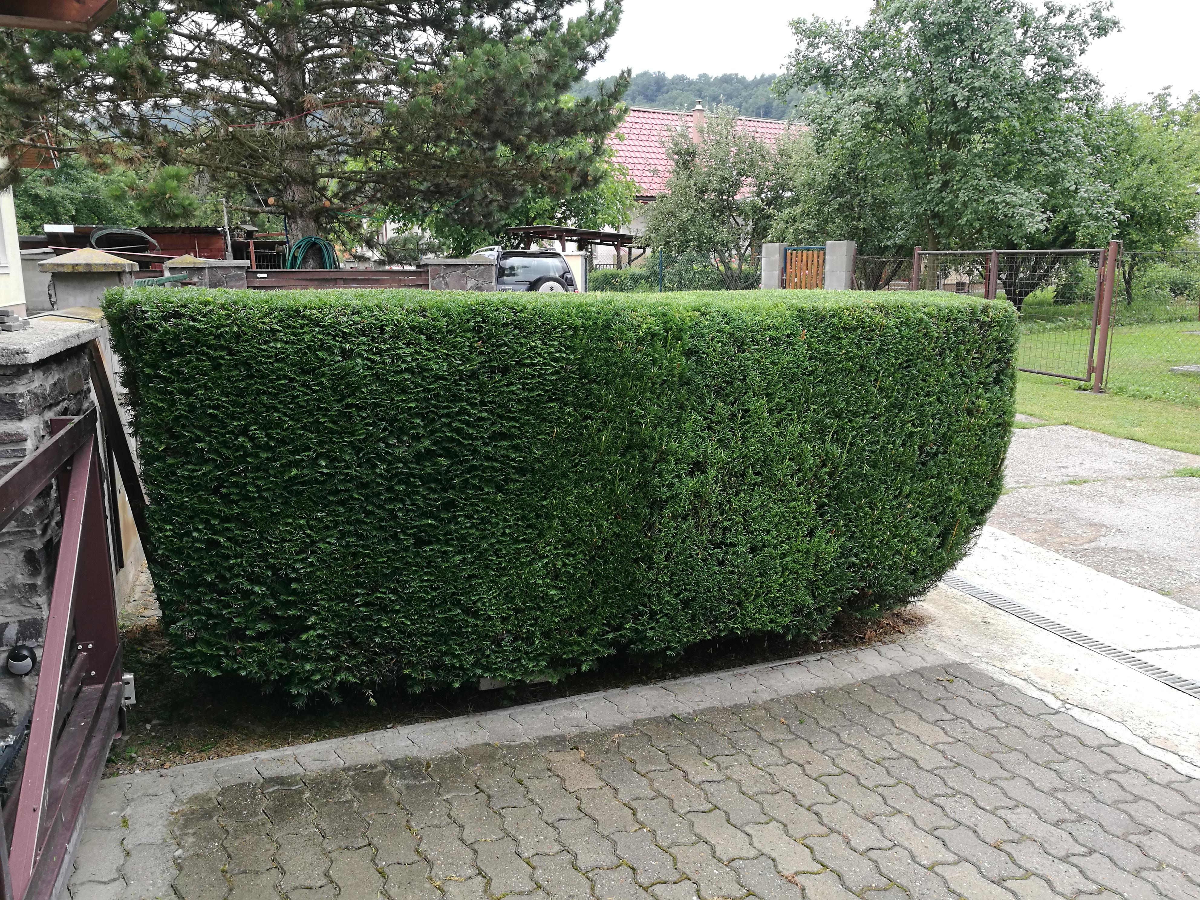 údržba záhrad Banská Bystrica